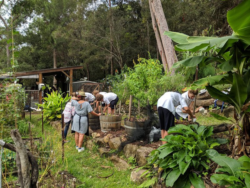 Her educational programmes are run from the garden, classroom and Scotts creek/surrounds