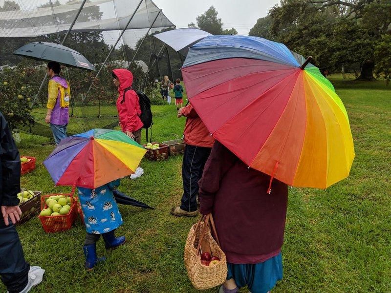 Teacher Julie's umbrella provided the rainbow...
