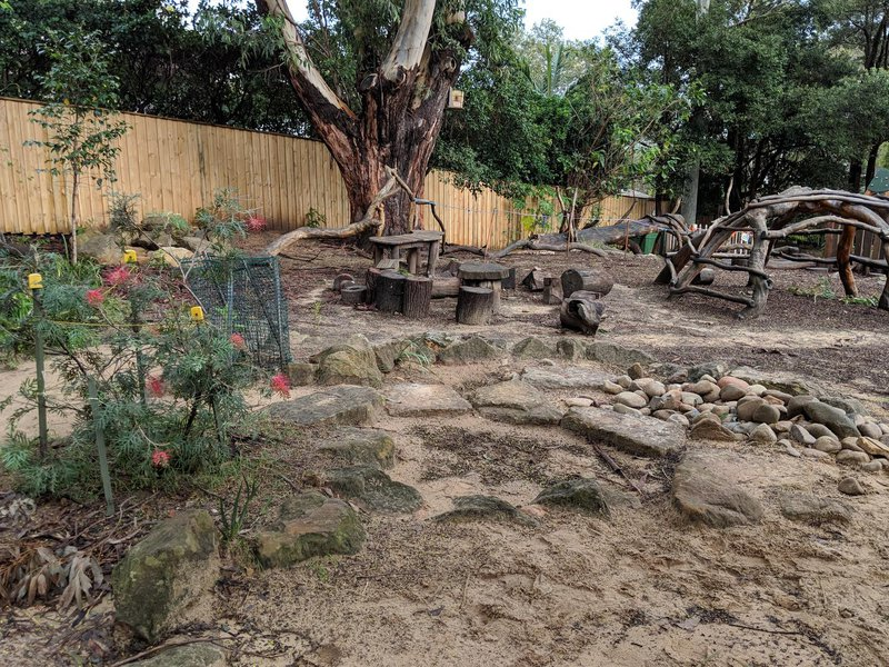 You will find me on the edge of the sandpit near the shed at Castlecrag campus