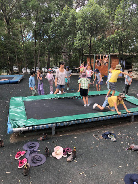They had a ball on the big trampoline with the school children from Warrah
