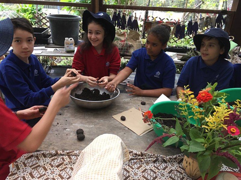Class 6 made Surprise Seed Pods in the garden kitchen with Kathy