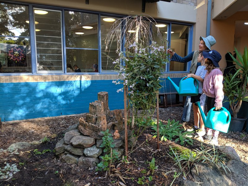 Taking care of the Medicinal Garden and the weeping willow outside Class 7