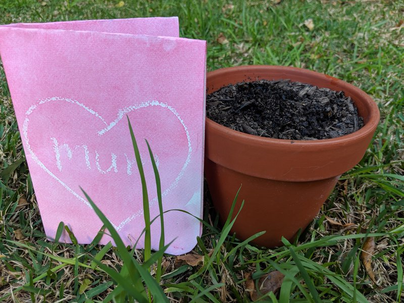 and Little Kindy planted secret seeds with magic cards for mum