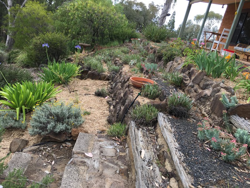 The home in the Warrambungles has beautiful gardens and space