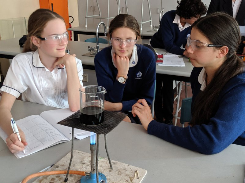 Year 8 Group Science Projects