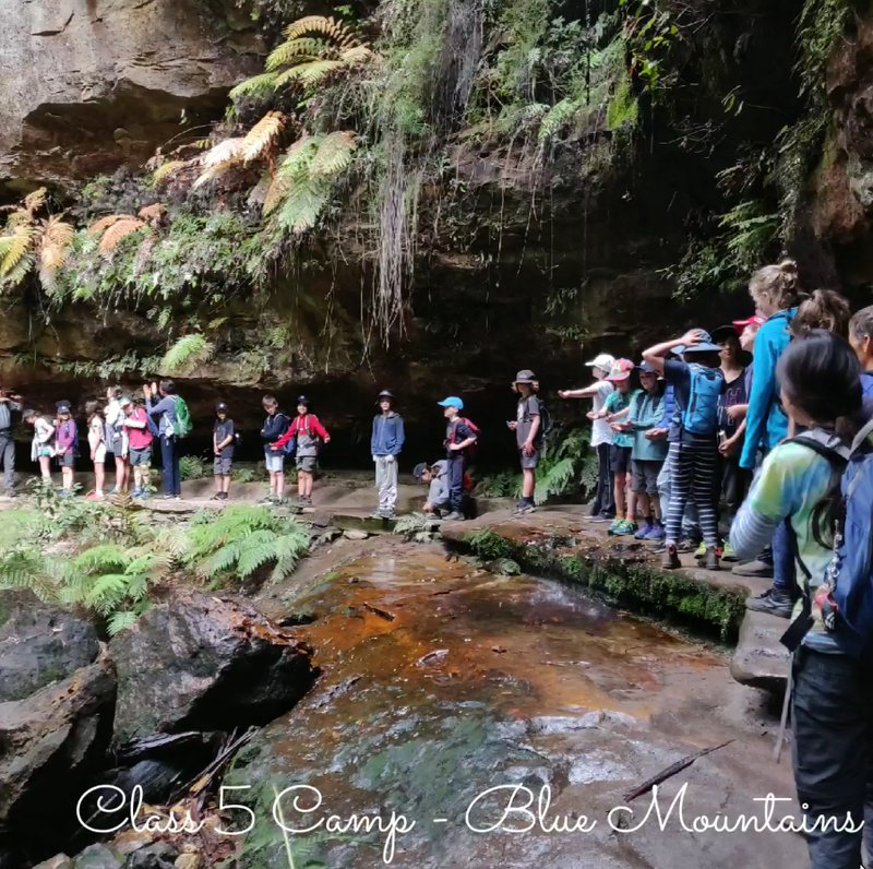 Class Five Blue Mountains outdoor education camping trip