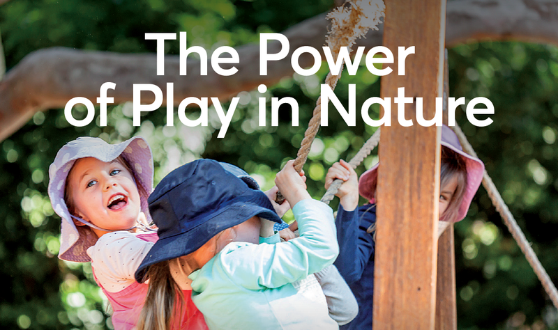 The Power of Play in Nature