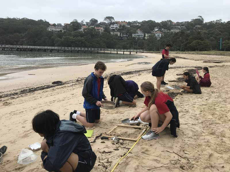 Year 10 visits the Sydney Institute of Marine Science