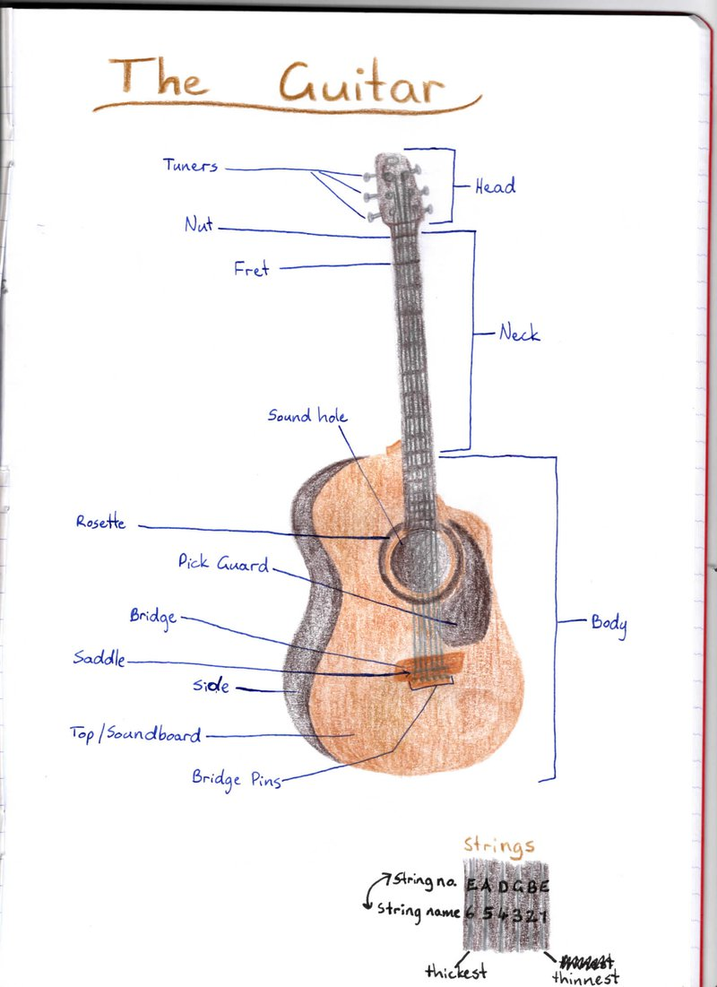 Year 8 students draw guitars