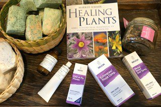 Grassroots Eco Store – Supporting Your Immune System