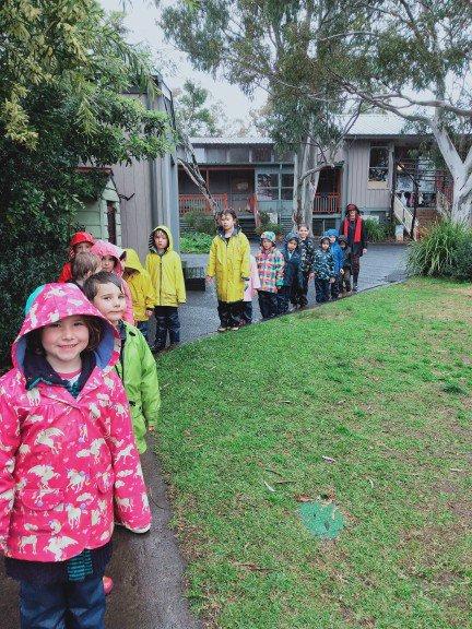 Kindergarten - A rainy day bushwalking