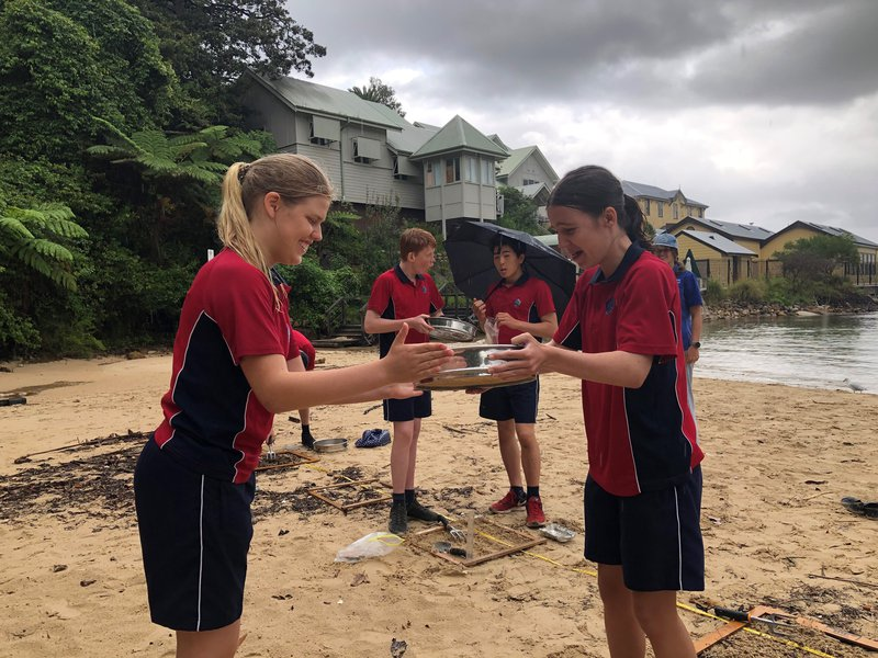Year 10 Geography Study of Environmental Change and Management