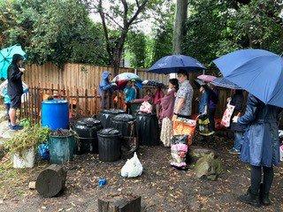The rain in Spain, falls mainly on Sandra Frain's compost!