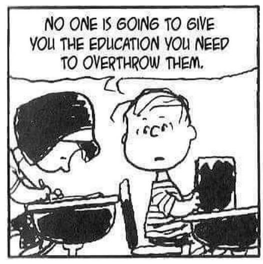 The Education You Need