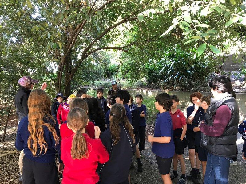 Class 5 excursion to Mt Annan Botanic Gardens